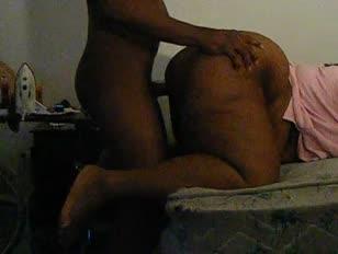 Tapir con mujeres teniendo sexo